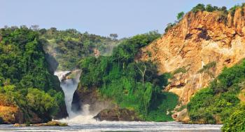 UGANDA <BR> TIERRA DE GORILA OPC. B<BR>Y BUHOMA